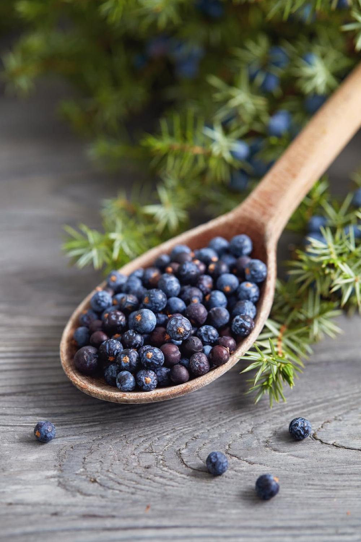 Spoonful of berries